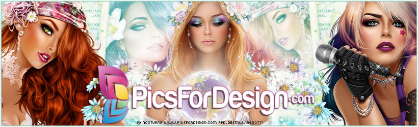 PicsForDesign Facebook Timeline